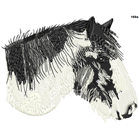 Fred The Coloured Cob 165a