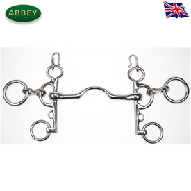 Abbey Riding Bitz Port Mouth Rugby Pelham