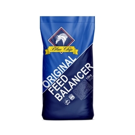 Blue Chip Original Balancer 15 kg